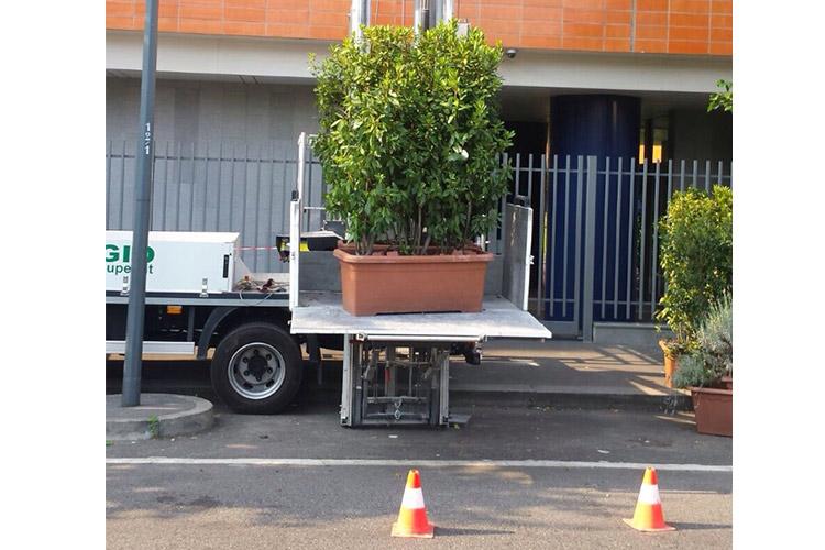 carico-al-piano-vasi-piante-verde