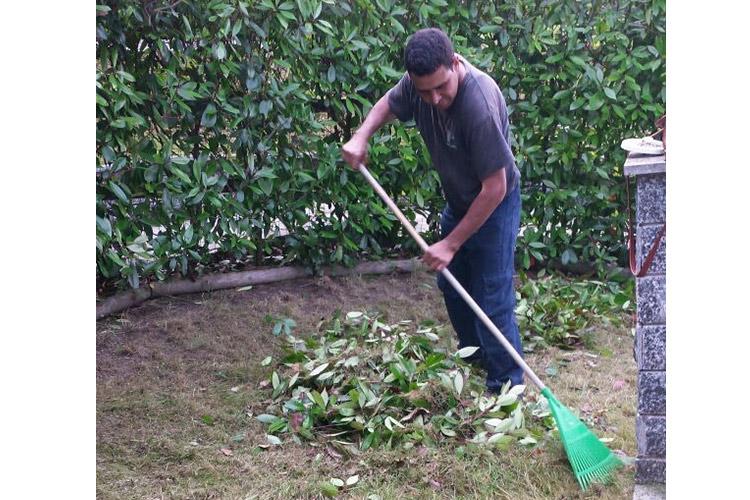 ritiro-smaltimento-verde-potature-sfalci-rifiuti-biodegradabili